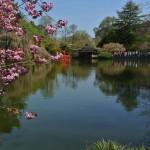 Il giardino botanico di Brooklyn