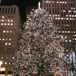 Non mancate all' accensione dell'albero al Rockefeller Center